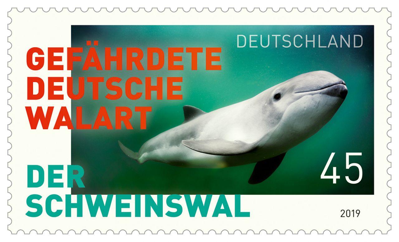Briefmarke mit Schweinswal