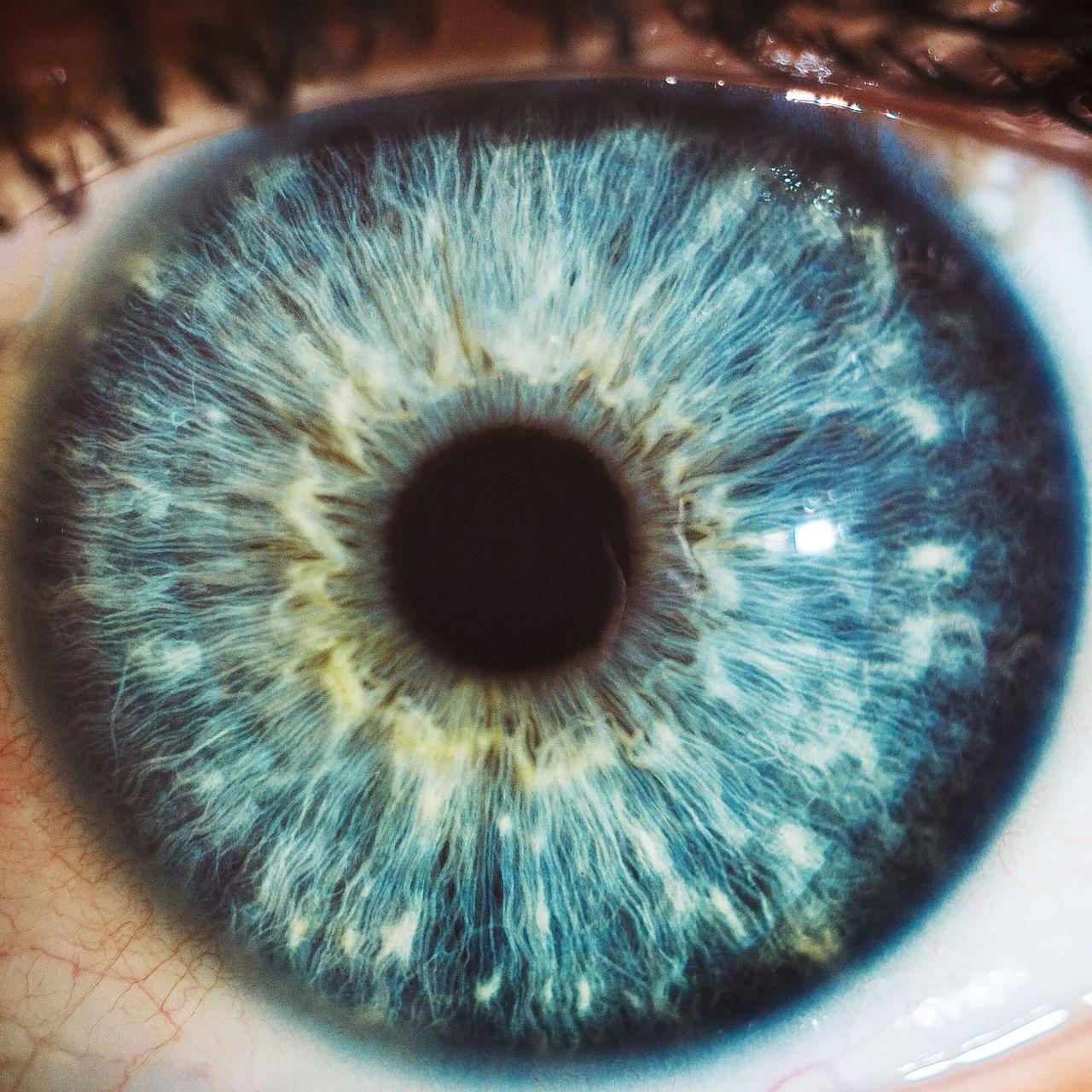 Wunderwerk der Natur: Dein Auge kann mehr, als du denkst
