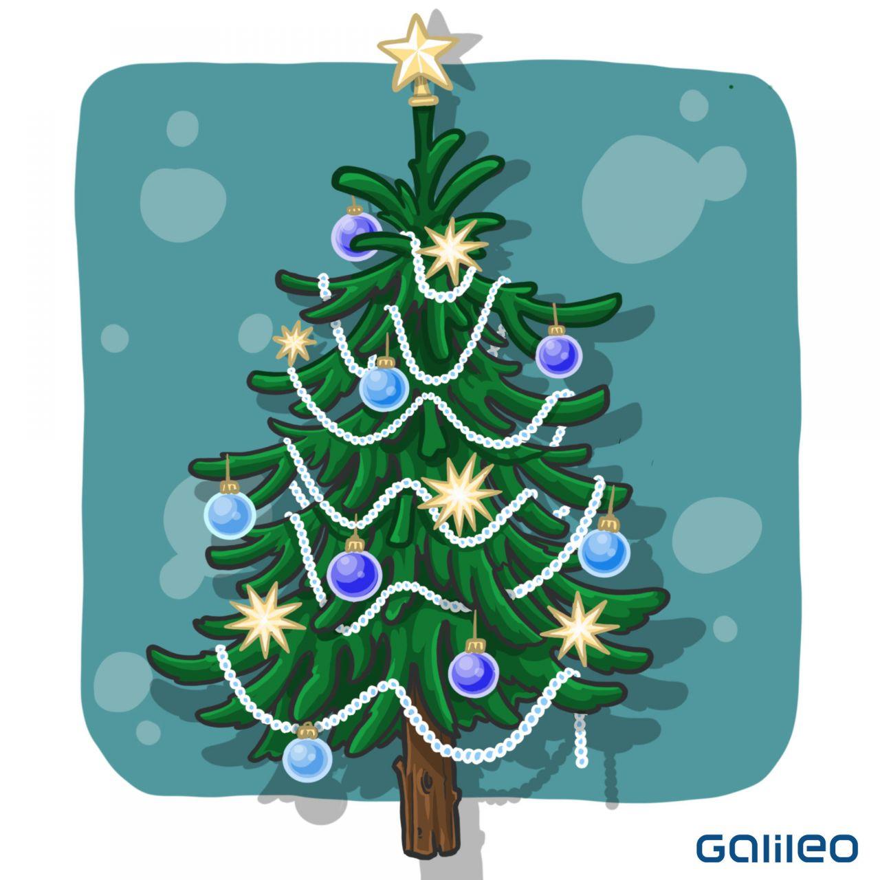 Brauch der Weihnachtsbäume