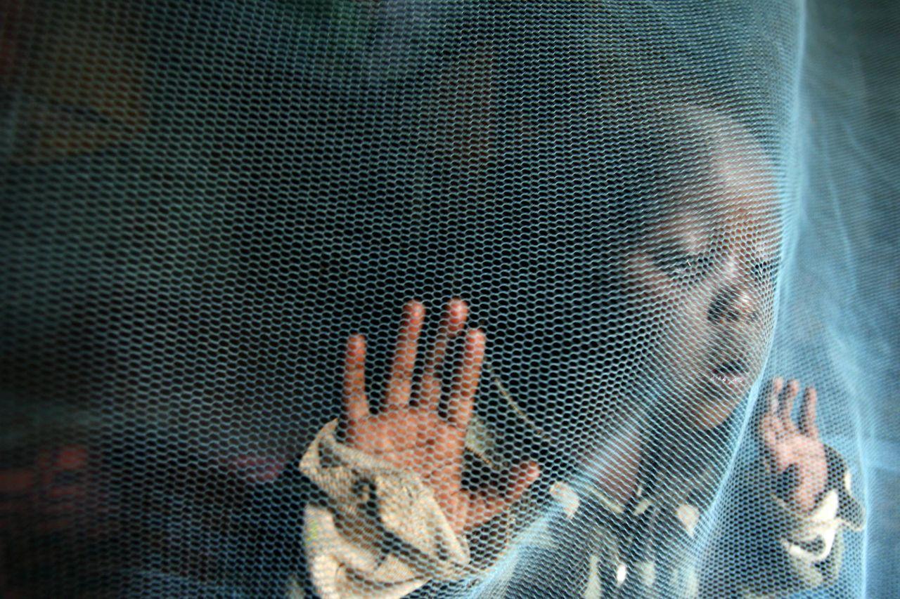 Malaria geht in manchen Ländern zurück