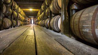 Whisky lagert in Holzfässern