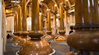 Whiskey wird destilliert