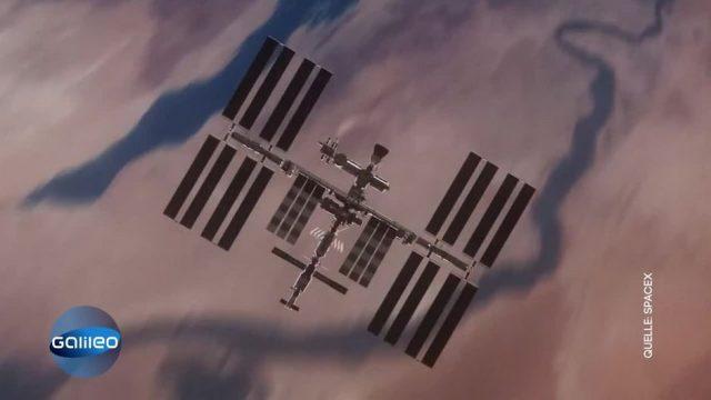 Elon Musk ist Weltmarktführer mit Space X