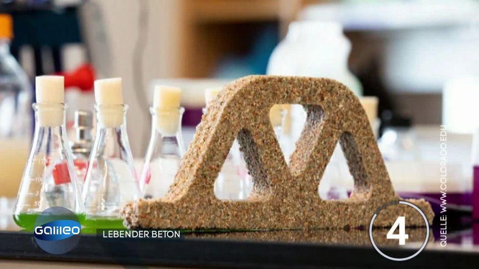 Forscher entwickeln lebendigen Beton