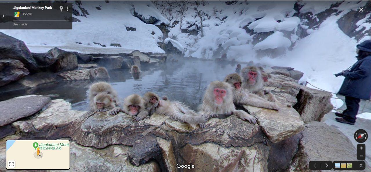 Eine Familie Affen in einem japanischen Nationalpark genießt ein Bad.