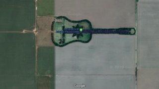 Aus der Luft aufgenommen sehen diese Pflanzen aus wie eine Gitarre.