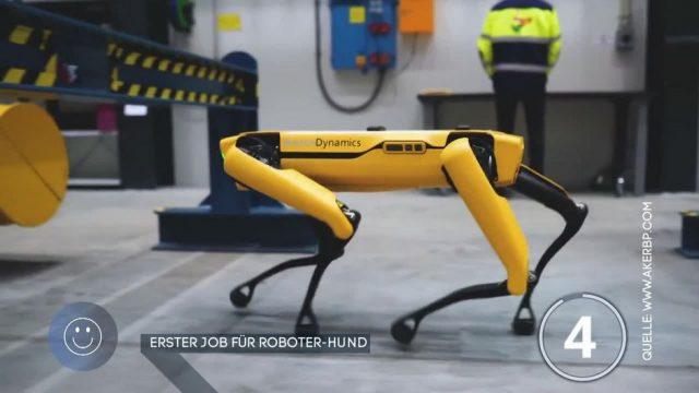 """Erster Job für Roboter-Hund """"Spot"""""""