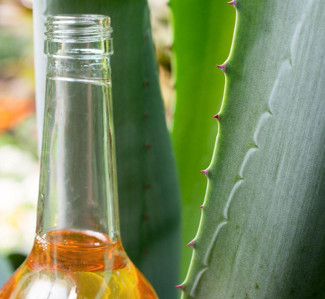 Agavendicksaft in der Flasche