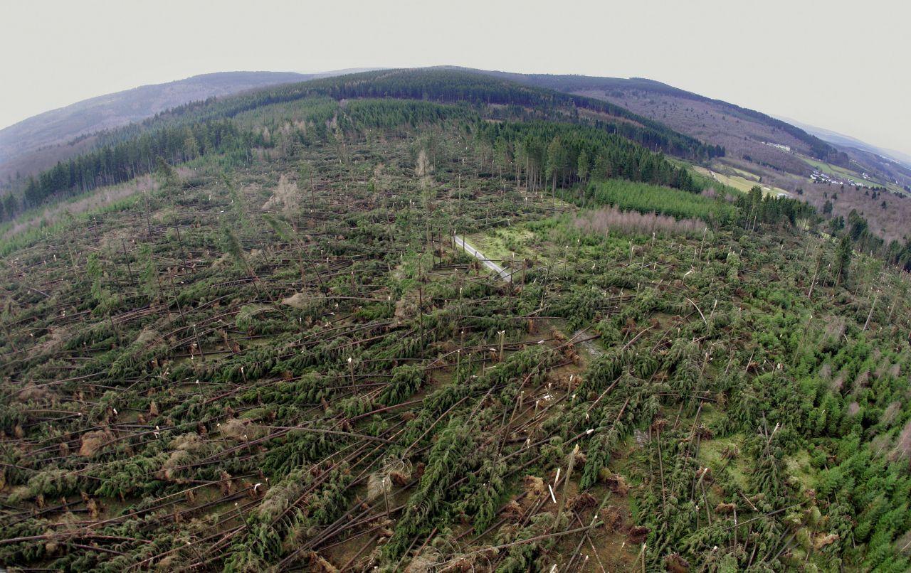 Der Orkan Kyrill entwurzelte 2007 einen ganzen Wald.