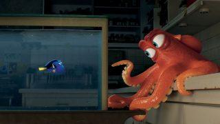 Erfolgreichste Animationsfilme Findes Dorie