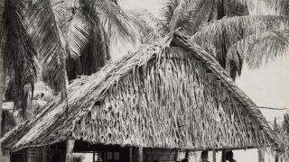Vor den Atombombentests lebten 167 Bikianer auf den Inseln. Sie alle wurden auf das kleinere Rongerik-Atoll umgesiedelt.