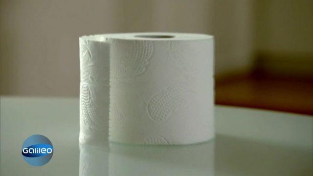 Alltagsheld Toilettenpapier: Woraus besteht es und wie wird es hergestellt?