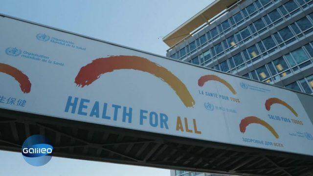 Die Aufgaben der Weltgesundheitsorganisation WHO