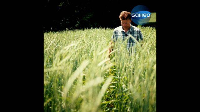 Die Landwirtschaft der Zukunft