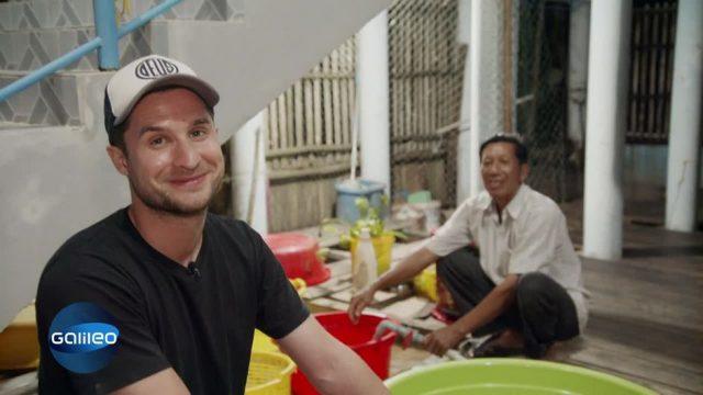 Garnelenzüchter in Vietnam: So hart ist die Arbeit wirklich