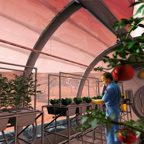 Pflanzen auf dem Mars