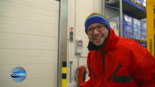 Mitarbeiter im Tiefkühllager - Ein Job für eiskalte Profis