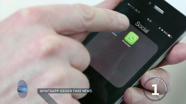 Neues Update: WhatsApp geht mit Neuerungen gegen Fake News vor