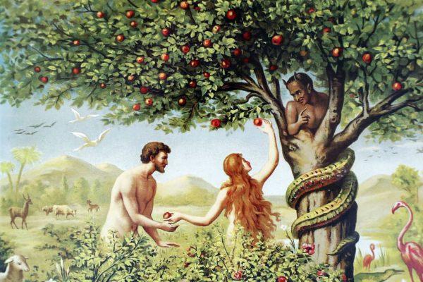Verbotene-Früchte-Phänomen
