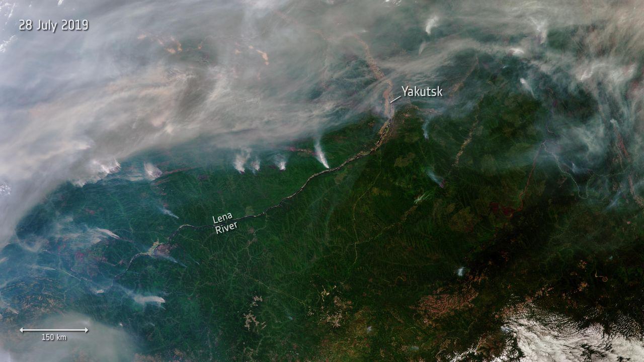 Satellit erkennt Waldbrände