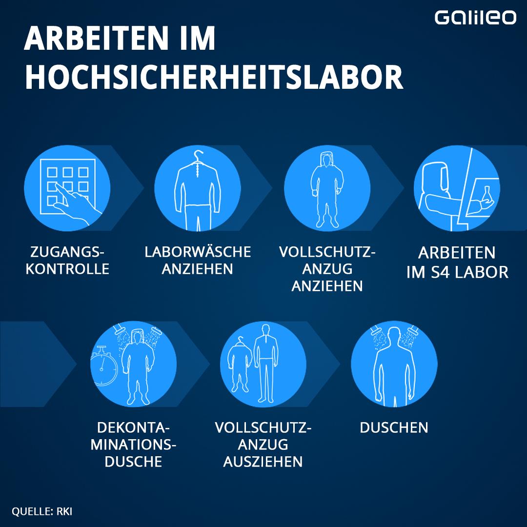 Infografik Arbeiten im Sicherheitslabor