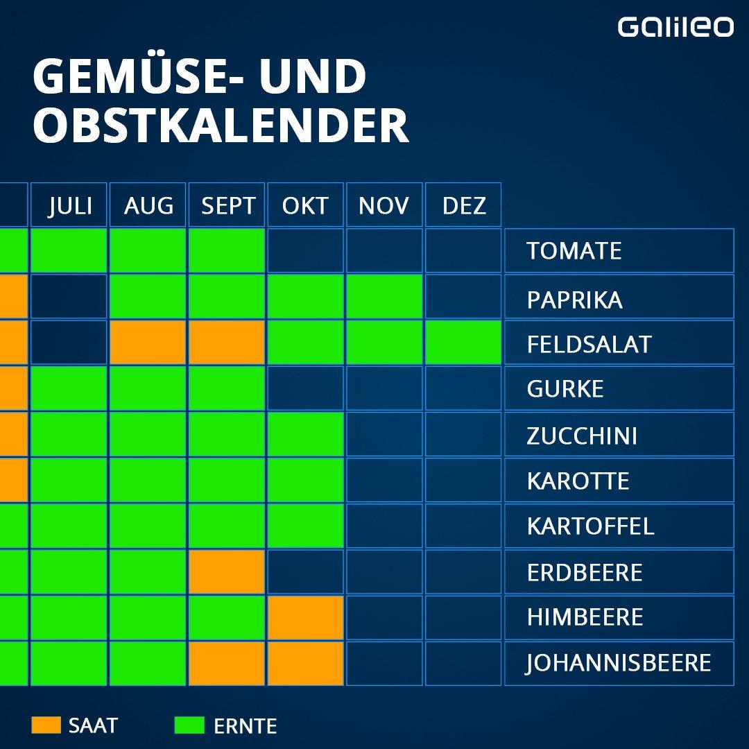Grafik Gemüse- und Obstkalender