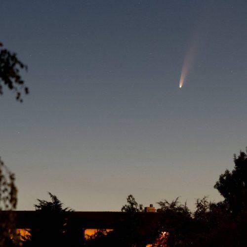 Komet Neowise am Nachhimmel