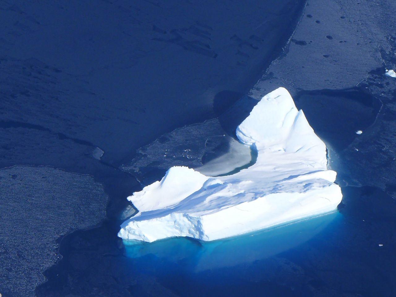 Eisbergwarnung