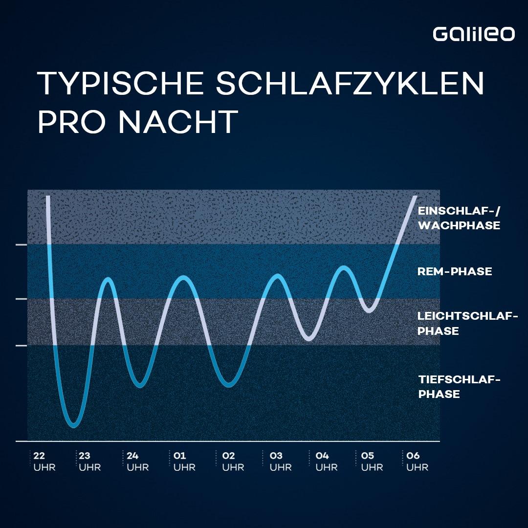 Inforgrafik: Typische Schlafzyklen pro Nacht