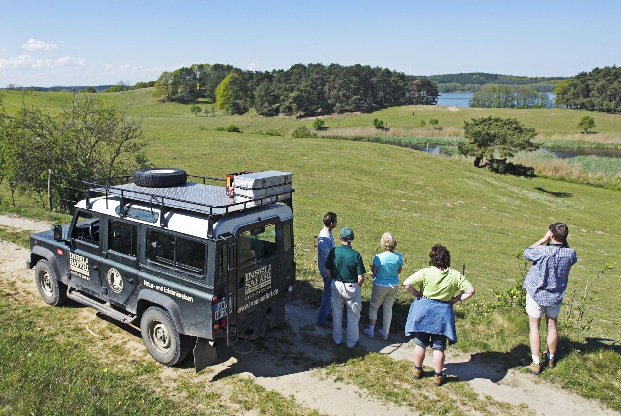 Usedom hat nicht nur wunderschöne Strände zu bieten, sondern auch eine aufregende Insel-Safari mit Eindrücken aus der Natur, die du so bestimmt noch nicht gesehen hast!