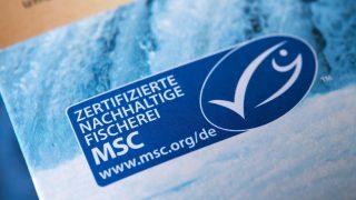 Das Siegel MSC-Fischerei soll nachhaltige Fischereien bestätigen.