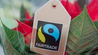 Das Siegel Fairtrade sagt aus, dass es sich um fairen Handel gehandelt hat.