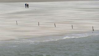 Das Wattenmeer auf Norderney gehört zum UNESCO Weltnaturerbe. Du kannst in Gummistiefeln oder barfuß durch das Watt wandern und lernst dabei den Lebensraum der Wattbewohner kennen: Augen auf nach Wattschnecken, Wattwürmer, Strandkrabben und Schlickkrebsen.