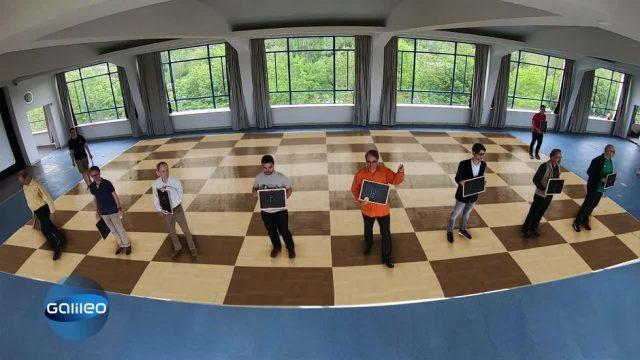 Quipp Quiz: Du gegen Schachspieler
