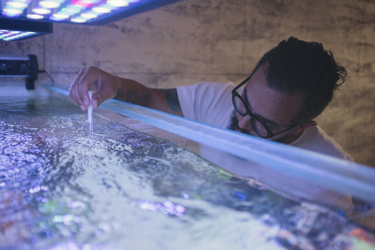 Mann misst Temperatur in Aquarium