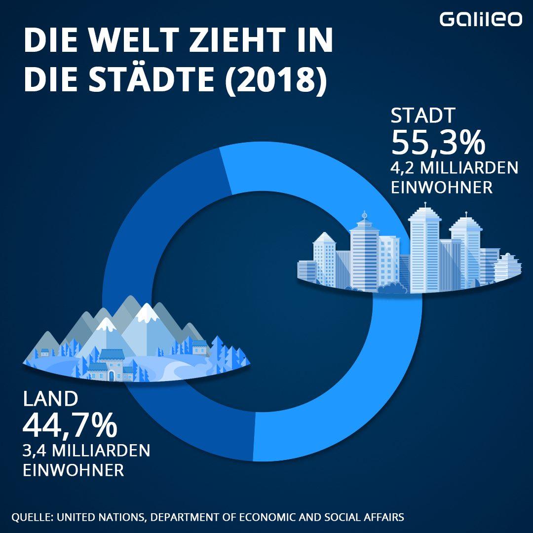 Vor 2 Jahren war die Anzahl der Stadt-und Landlebenden fast ausgeglichen.