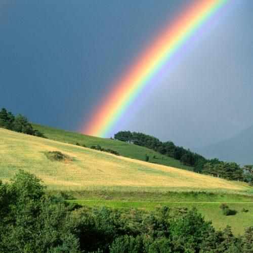 Wunderschöner Regenbogen.