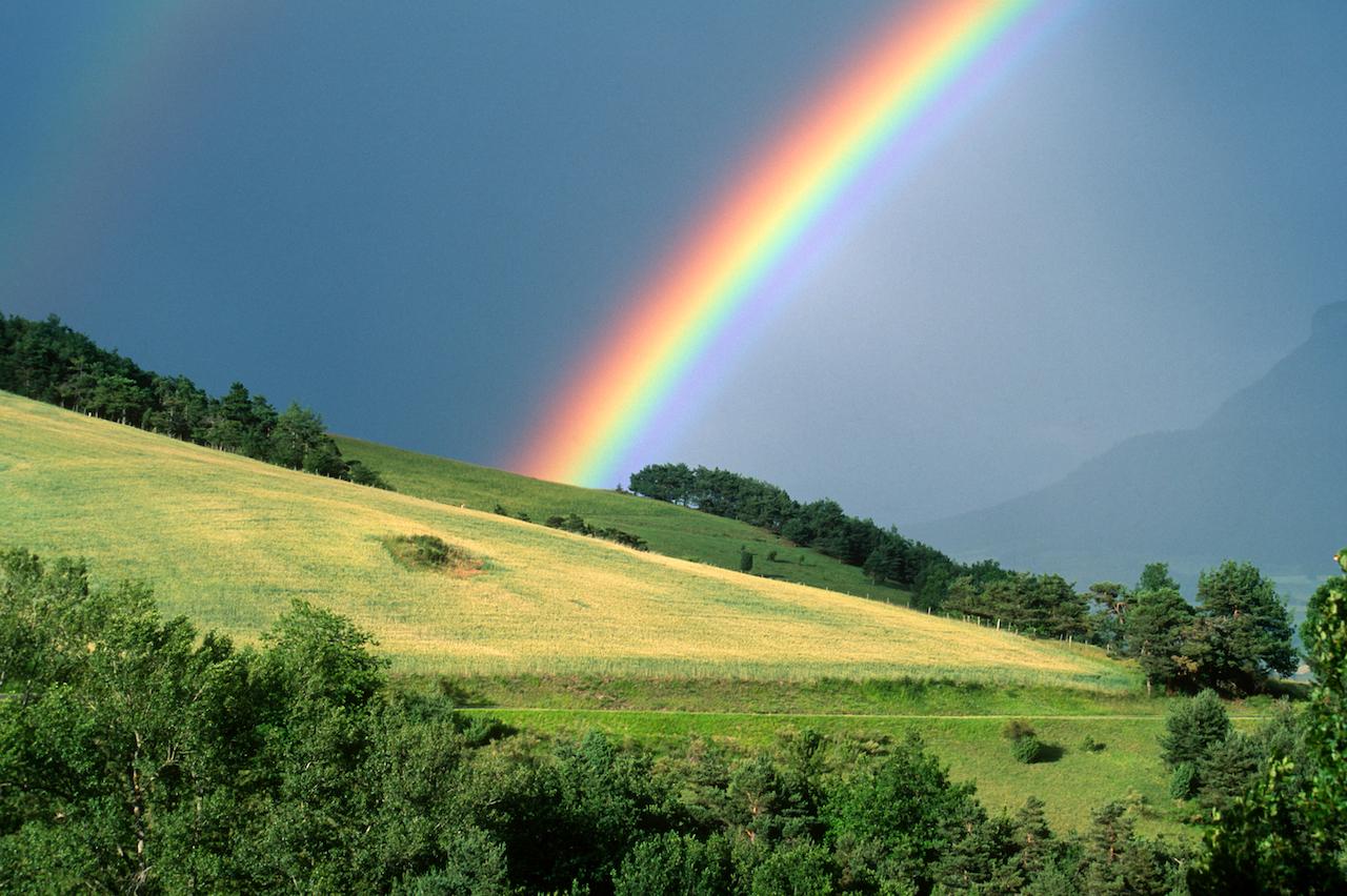 So viele Farben! Wie ein Regenbogen entsteht und warum er uns so fasziniert