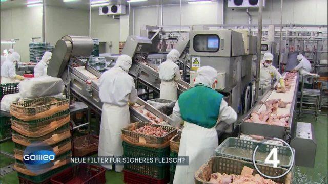 Neue Lüftungsfilter für sicheres Fleisch?