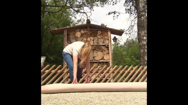 """Schlaumeier: Woher kommt die Redewendung """"jemandem Honig ums Maull schmieren""""? - 10s"""