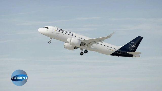Wie die Lufthansa nach Corona wieder durchstarten will