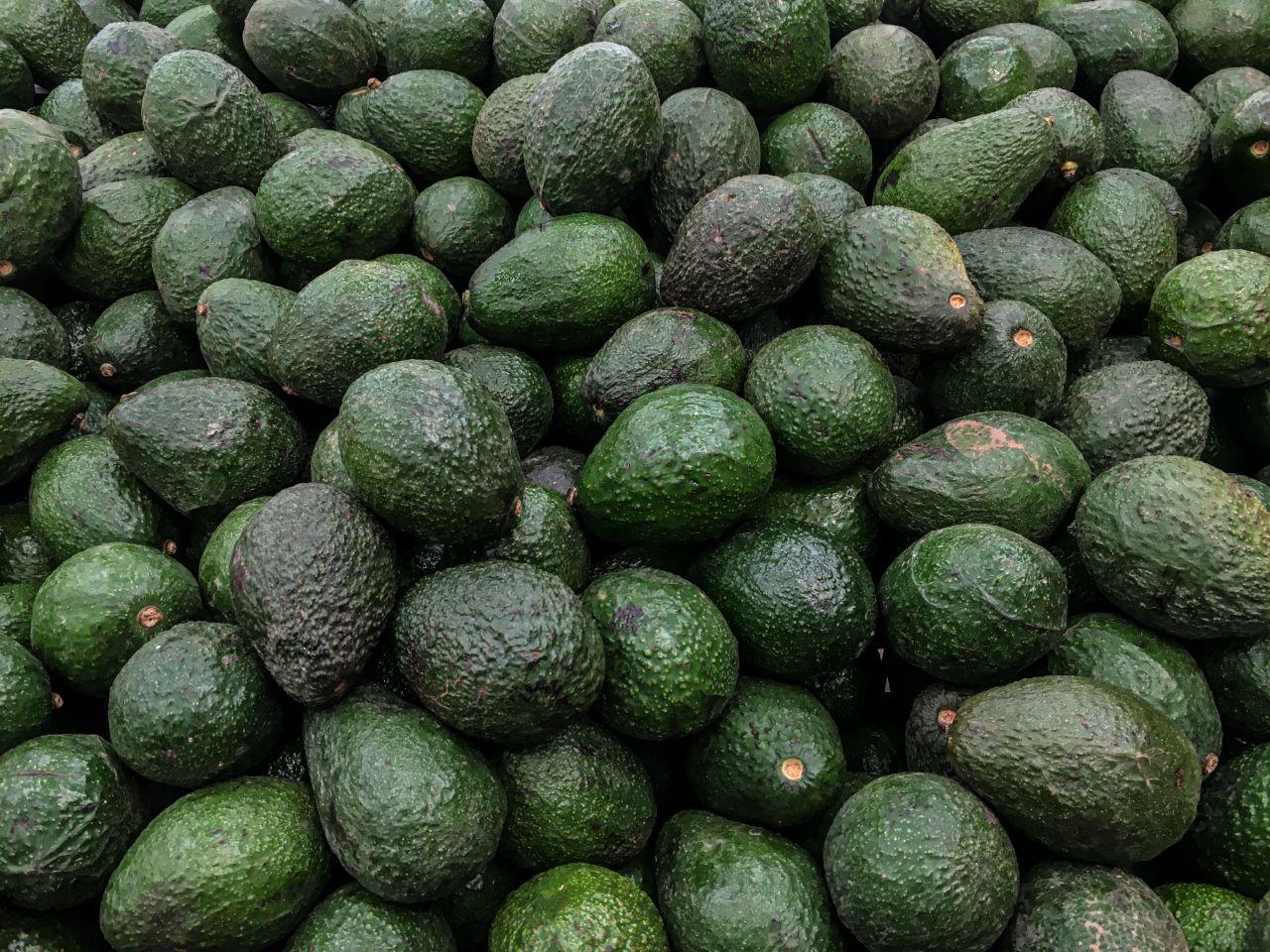 FRisch geerntete Avocados
