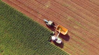 Landwirtschaft, CO2