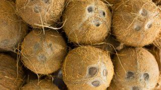 Viele Kokosnüsse auf einem Haufen