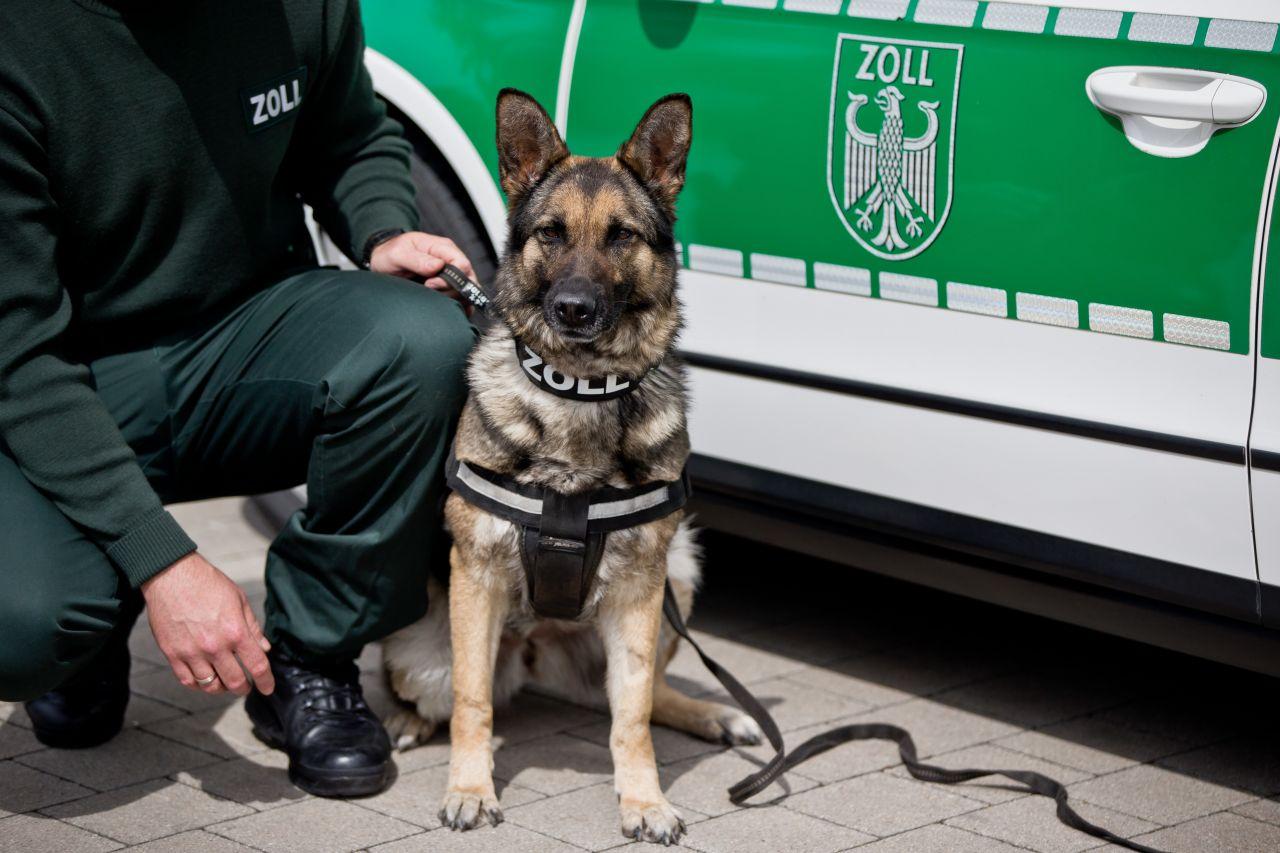 Polizei Spürhund
