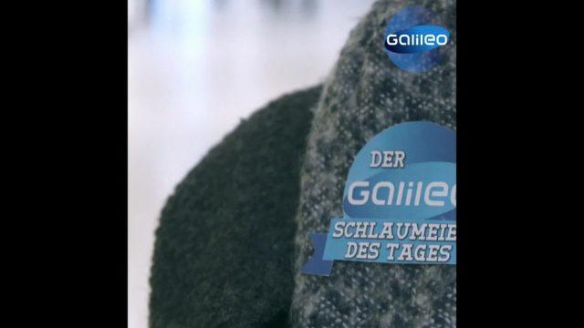 """Schlaumeier: Woher kommt die Redewendung """"durch die Lappen gehen""""?"""