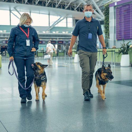 Security mit Hunden am Flughafen