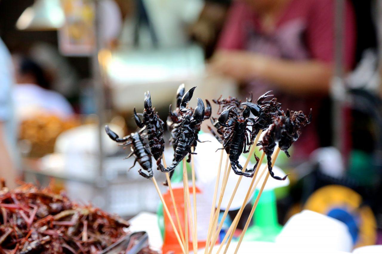 Skorpion am Stiel