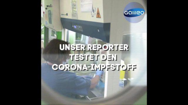 Corona-Impfstoff: Unser Reporter wagt das Selbstexperiment