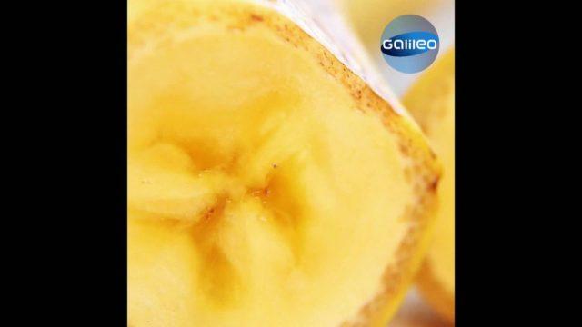Kennst du diese exotischen Früchte?